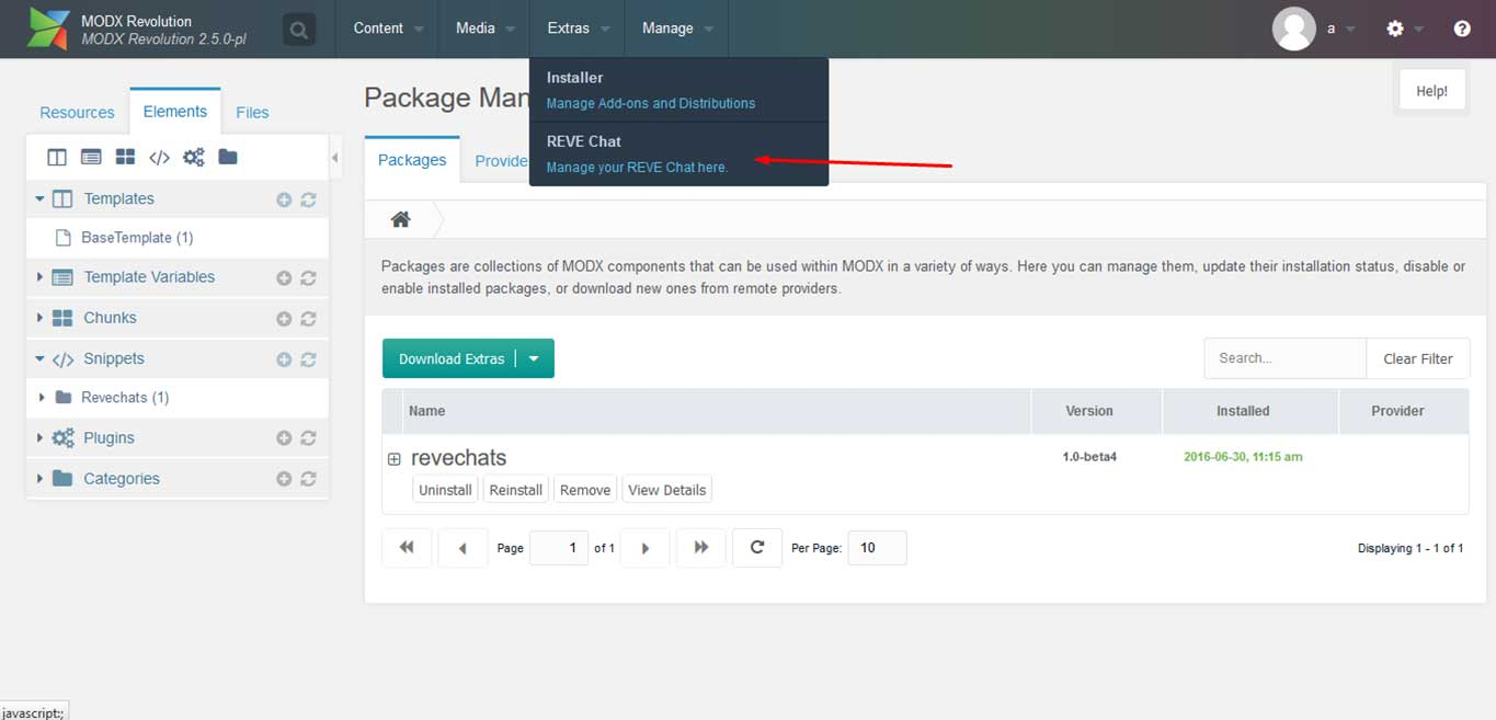 Reve Chat Integration with MODX: Step 9