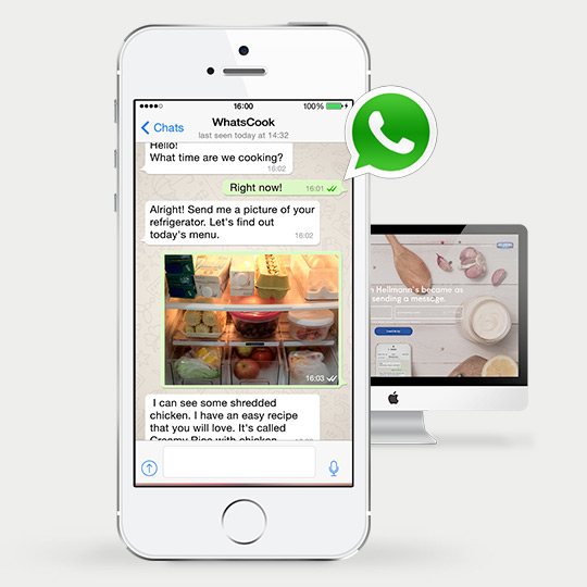 whatapp-for-social-media-customer-service